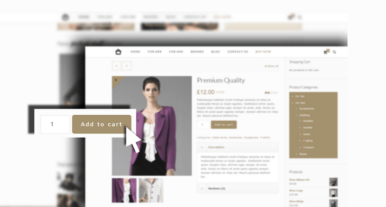 eCommerce website design in Dayton Ohio by Online Business Marketing Solutions
